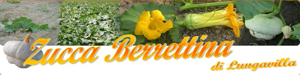 Zucca Berrettina di Lungavilla